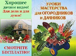 Видео уроки для садоводов и дачников