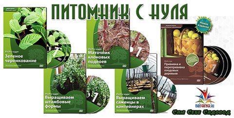 Советы садовода Евгения Федотова по садоводству