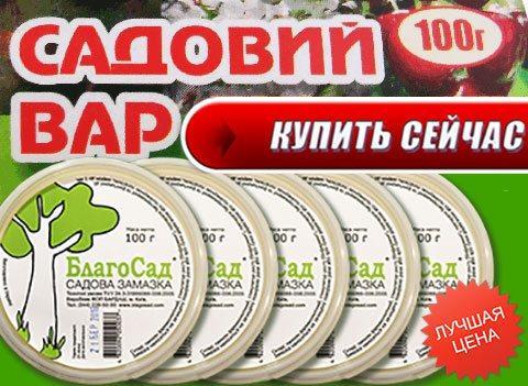 Купить садовую замазку Благосад в Москве и СПБ через интернет магазин