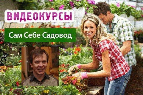 Samsebesadovod ru - видео курсы Евгения Федотова и Романа Врублевского