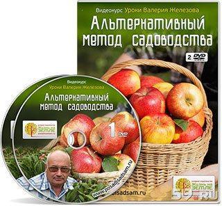 Альтернативный метод садоводства Валерия Жезлова