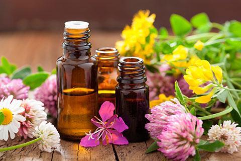 Курсы по ароматерапии