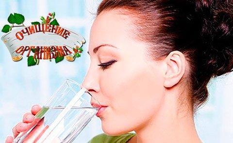 Экологическая медицина и очищение организма