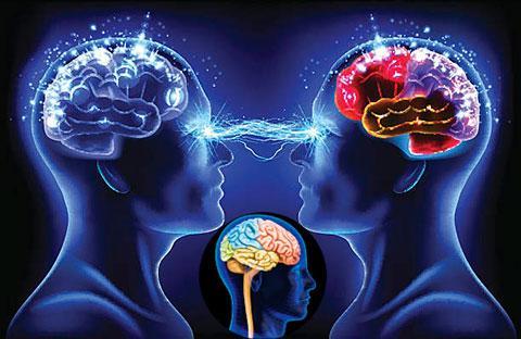 Развитие способностей головного мозга