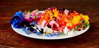 Книга о съедобных цветах