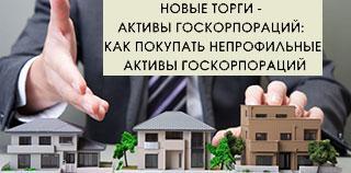 Активы госкорпораций