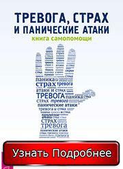 Книга Андрея Голощапова